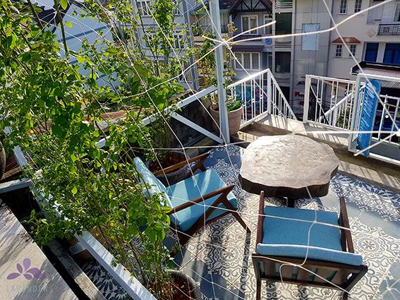 Khám phá 5 quán cafe view rừng đẹp hớp hồn tại Đà Lạt