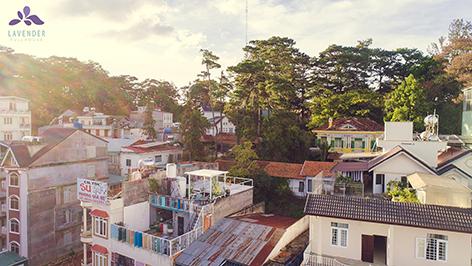 Ngôi nhà hạnh phúc Lavender Fullhouse – homestay đẹp tại Đà Lạt